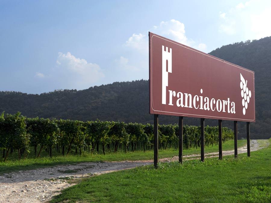 Francia vineyard